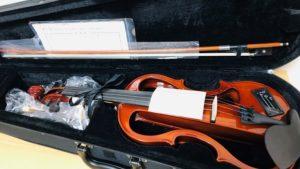 カルロジョダーノのエレキバイオリン